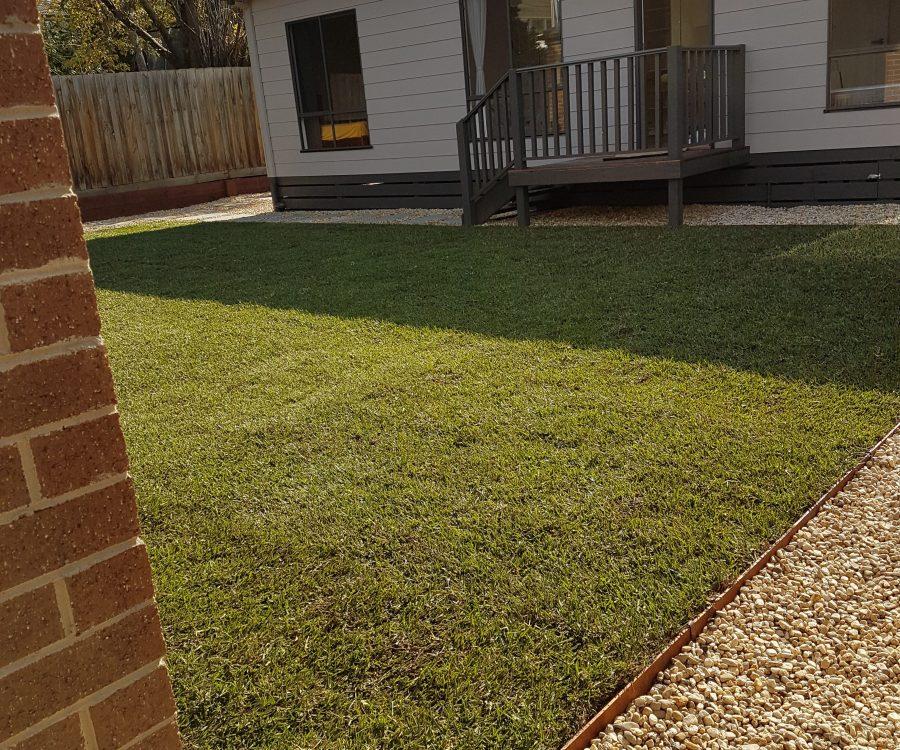 Mont Albert granny flat grass after